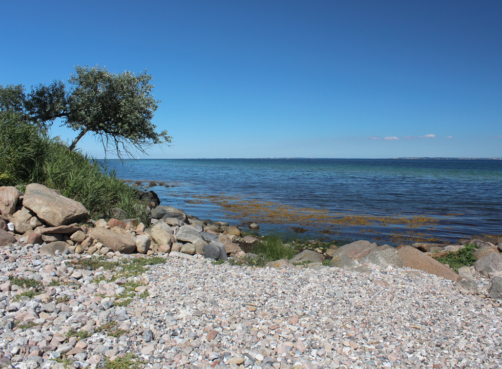 View of the sea from the shore of the holiday home area Nørre Kettingskov