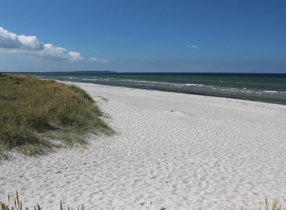 The wide sandy beach, Skærby Strand, with inviting bathing water, just north of Nykøbing Sjælland