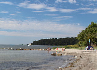 Cosy and child-friendly bathing beach by the forest area Skansen in Nysted