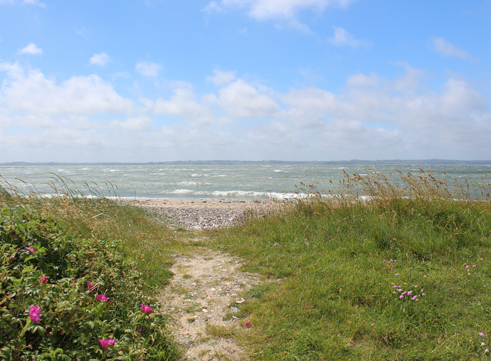 The fine Limfjord beach in the holiday home area Oddesund
