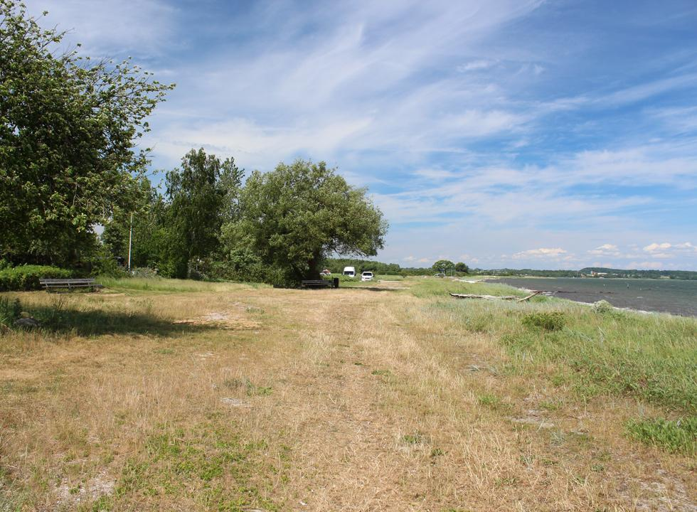 Green space between the beach and the holiday homes of Ørby Hage Strand