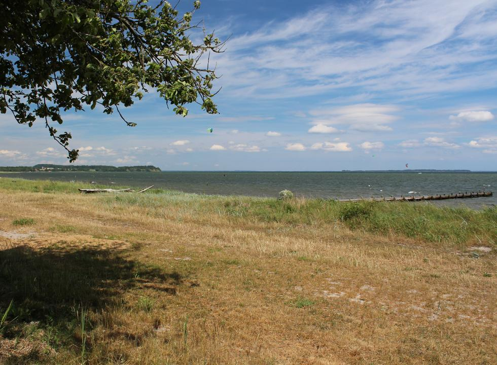 View of the Little Belt from the green area behind the beach in Ørby Hage Strand