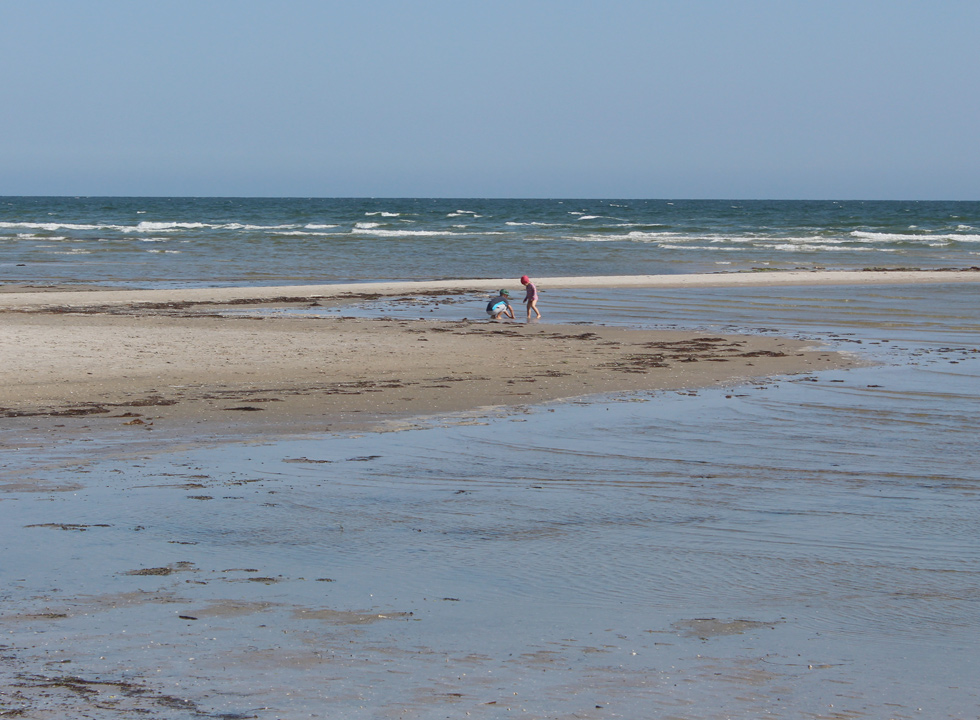 Children play in the water's edge on the beach in Oster Hurup