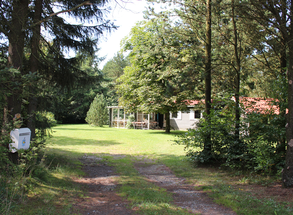 In Pårup you can spend your holiday in a screened holiday home, surrounded by high trees