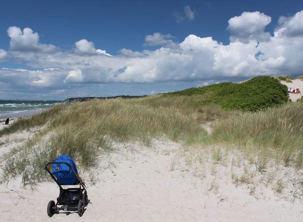 Picnic in the dunes behind the bathing beach of the holiday home area Ristinge