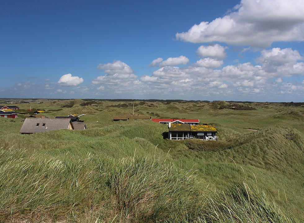 Holiday homes in the green dune landscape behind the beach in Rødhus