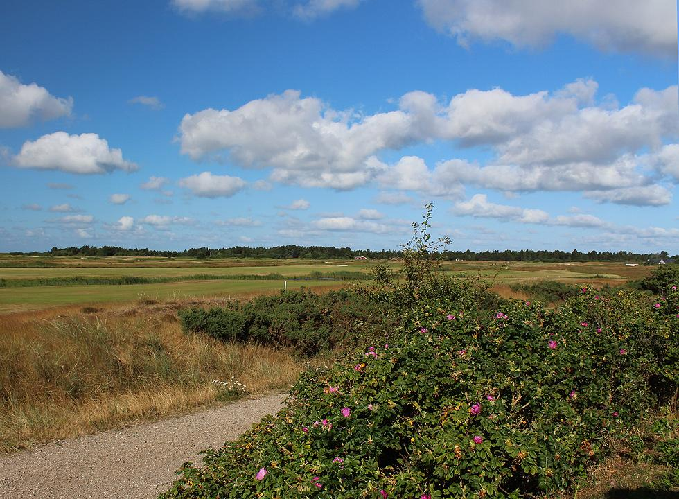 The golf course in Havneby is surrounded by forest and unspoiled nature