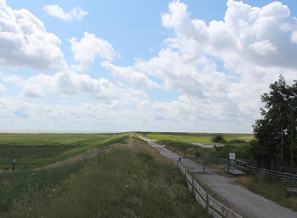 You can follow a path along the dike on the southern part of Romo from Havneby