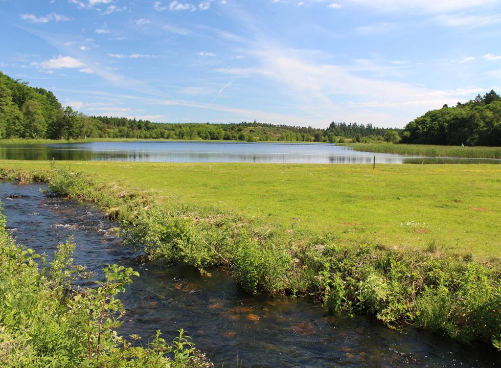 The beautiful lake, Rørbæk Sø, is surrounded by hilly nature and preserved forest