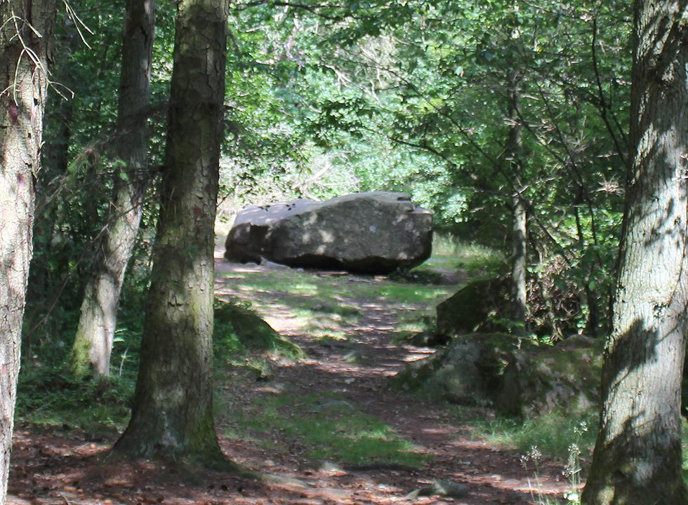 The rocking stone, Rokkestenen, is a famous attraction in Rutsker Højlyng