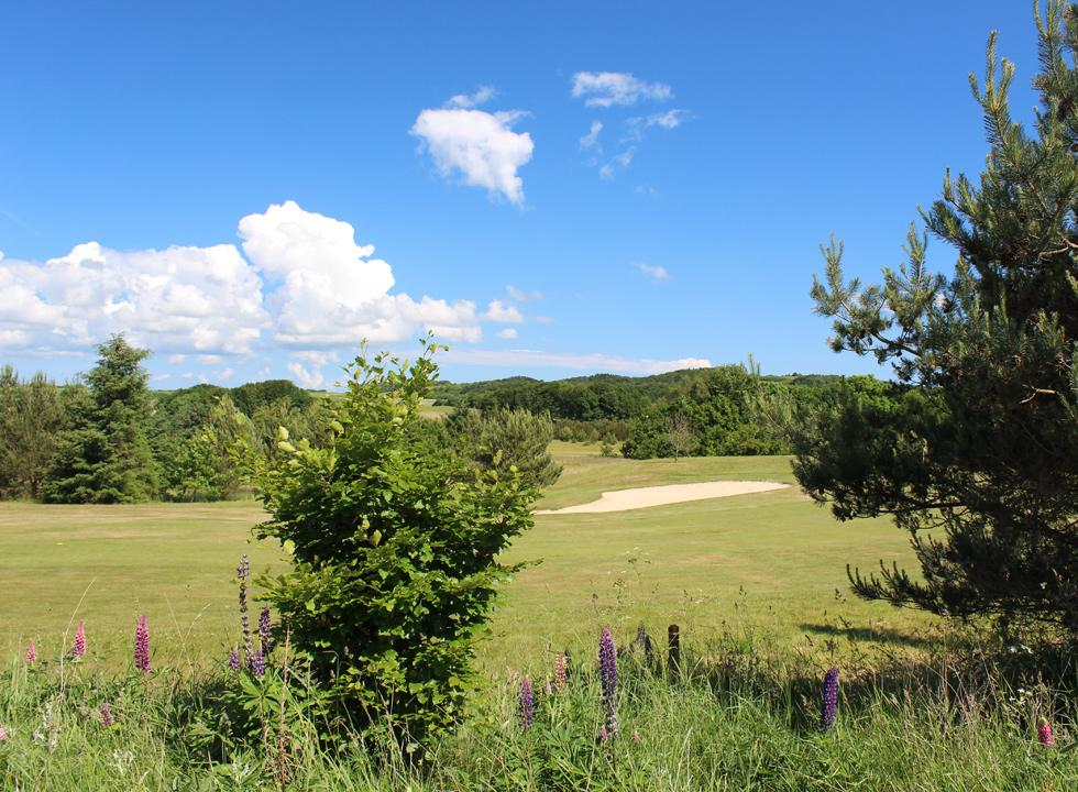 The hilly golf course of Sæby Golfklub is scenically situated in the outskirts of Sæby