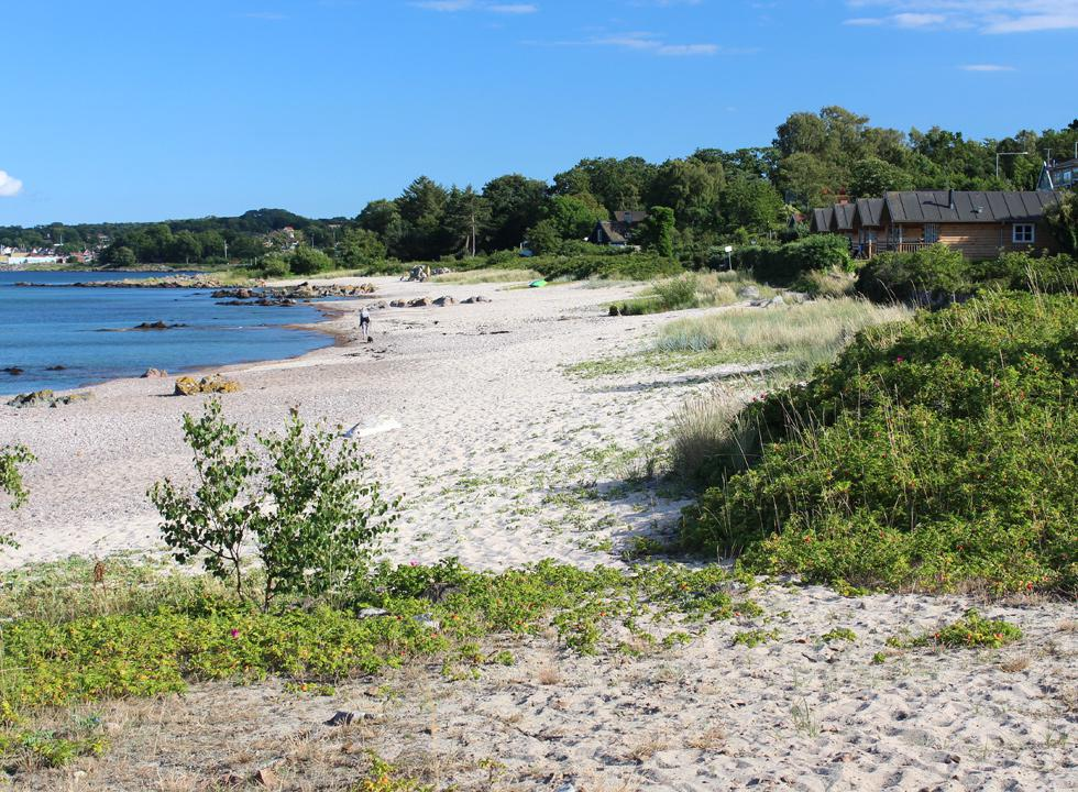 Holiday homes behind one of the beaches in Sandkås