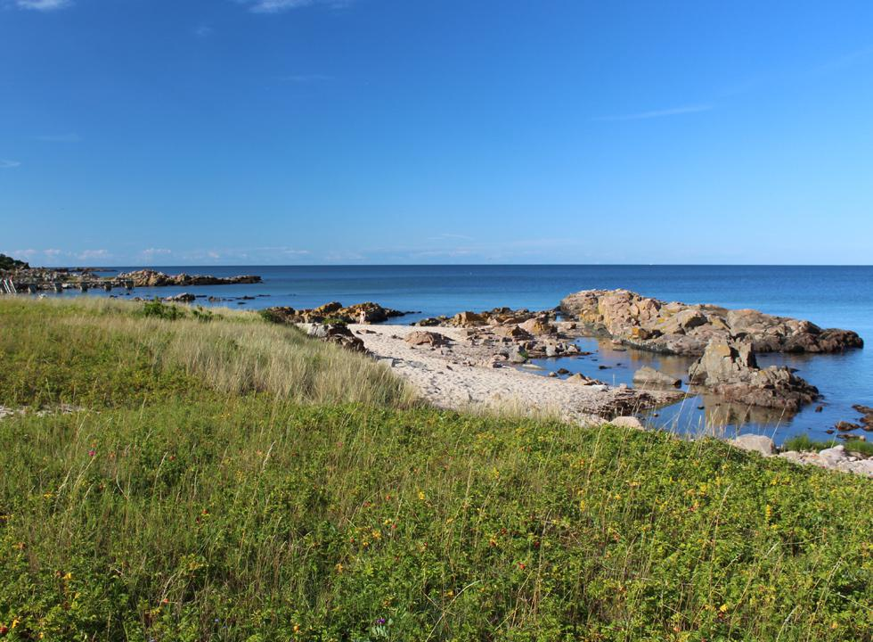 Along the shore of Sandkås you will find small sandy beaches between the cliffs