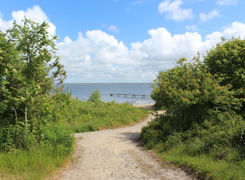 A gravel road leads down to the small sandy beach with a bathing jetty in Sdr. Nissum