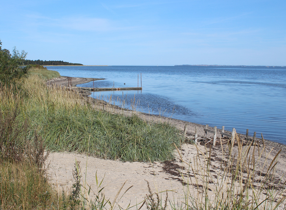 In Selde you will find a small and fine Limfjord beach