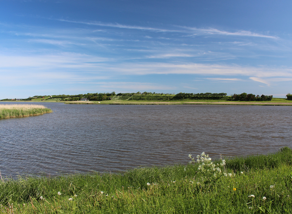View of the dammed wetlands by the dam in Sennels