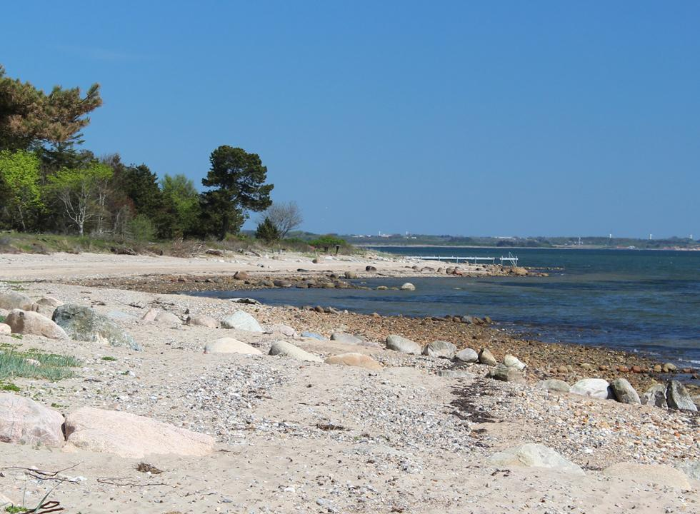 The shore along the holiday home area Sillerslev with clear bathing water and a bathing jetty