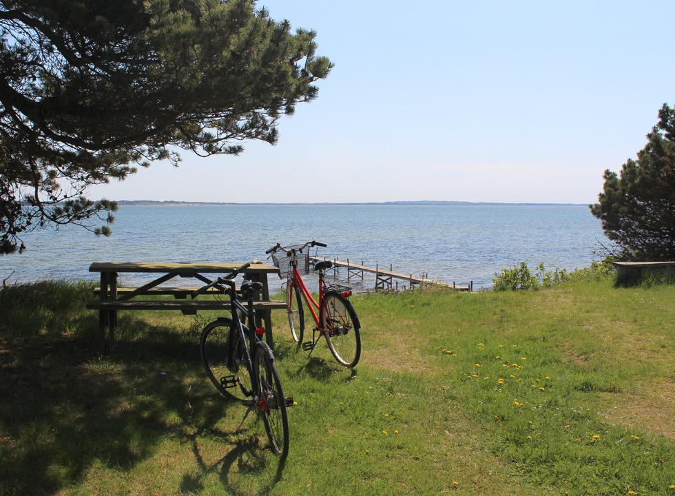 Picnic area behind the beach and the bathing jetty in the holiday home area Sillerslev