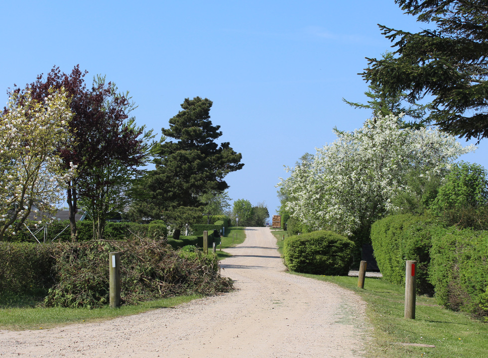 Cosy road with holiday homes in the holiday area Skåstrup