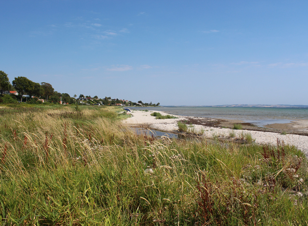 The holiday homes in Skæring are situated in green surroundings along the beach
