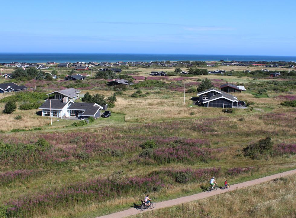 Holiday homes in scenic surroundings behind the beach of Skallerup