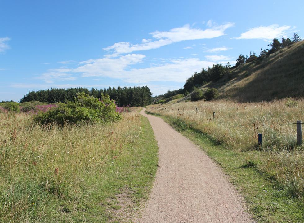A scenic bicycle route follows the west coast all the way from Skallerup to Hirtshals