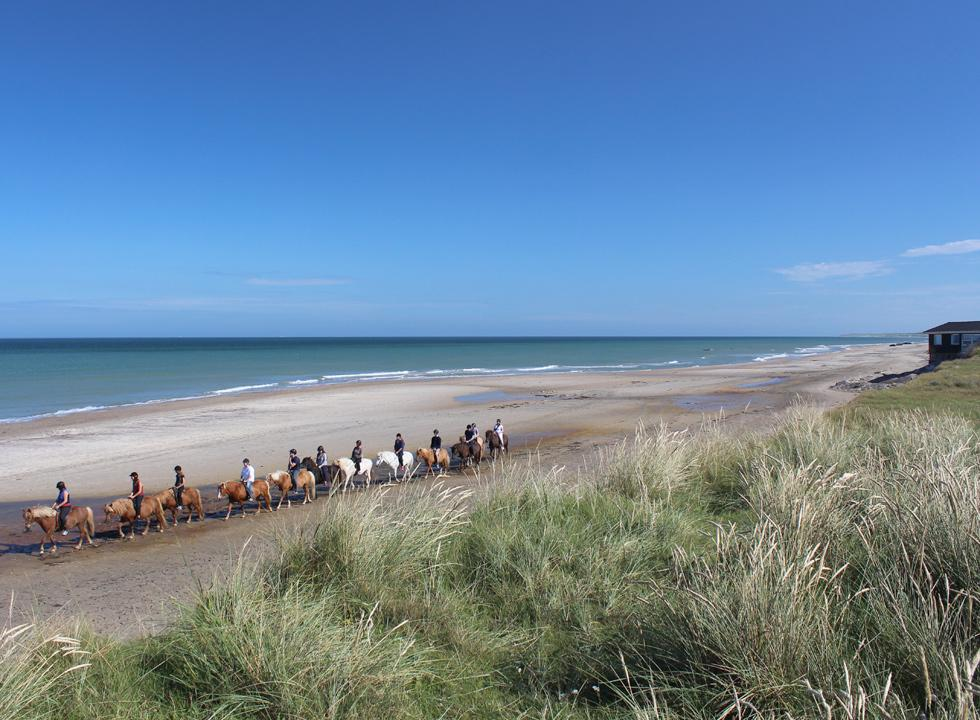 The beach of Skallerup is suitable for swimming as well as walks, runs and rides