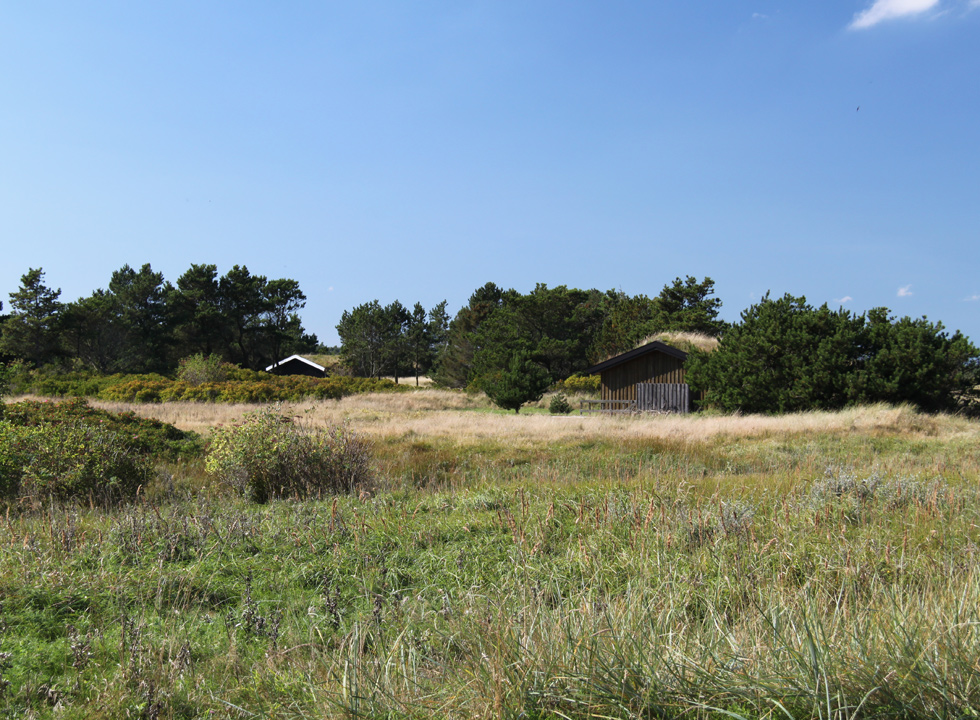 Holiday homes in green surroundings behind the beach of Skiveren