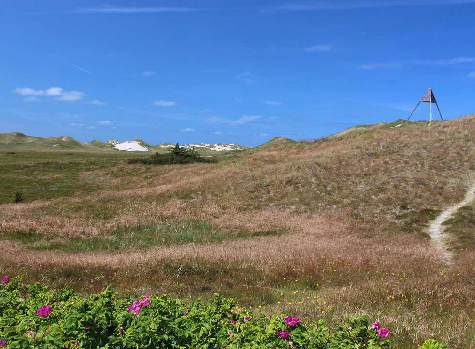 In Skodbjerge you can see a navigation mark on the dunes behind the shore