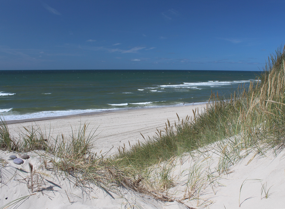 View of the white sandy beach in Skodbjerge from the high dunes