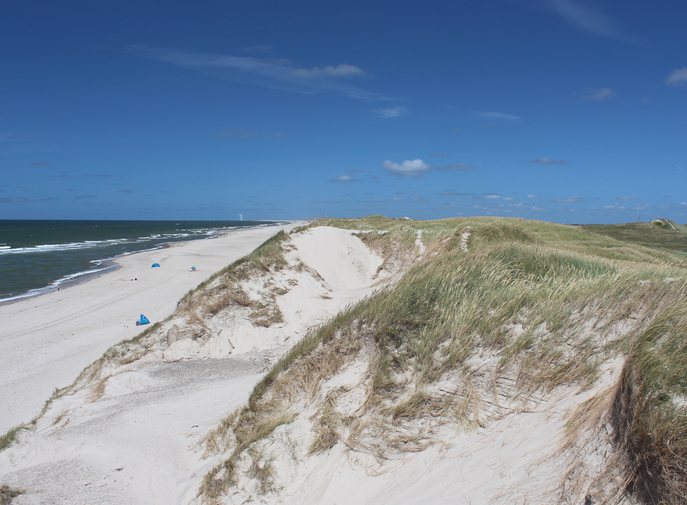 Between the beach and the holiday homes in Skodbjerge you will find a hilly dune area with paths