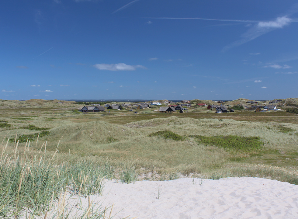 The holiday homes of Skodbjerge are located in a green and hilly dune area behind the beach