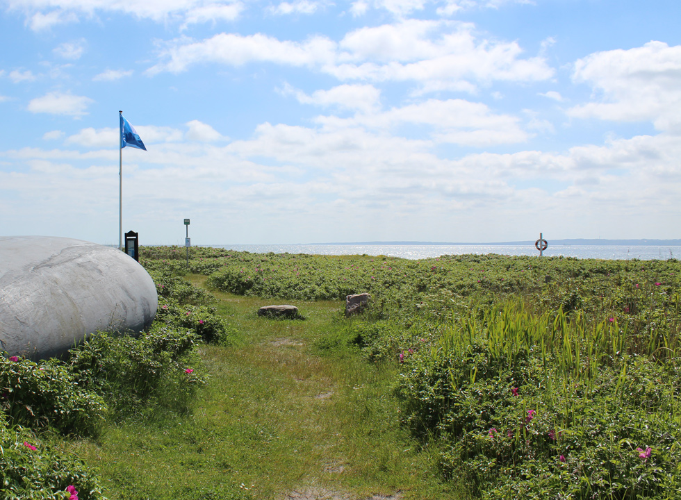 Blue flag in the green surroundings behind the beach of Skødshoved