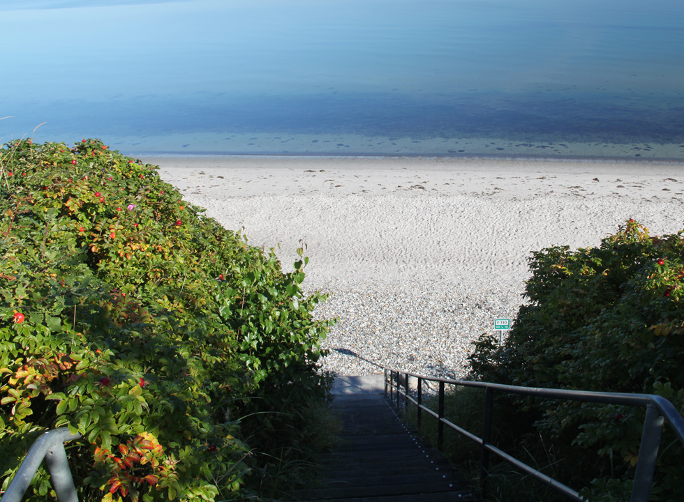 Access to the lovely beach in Skovgårde through stairs from the holiday homes