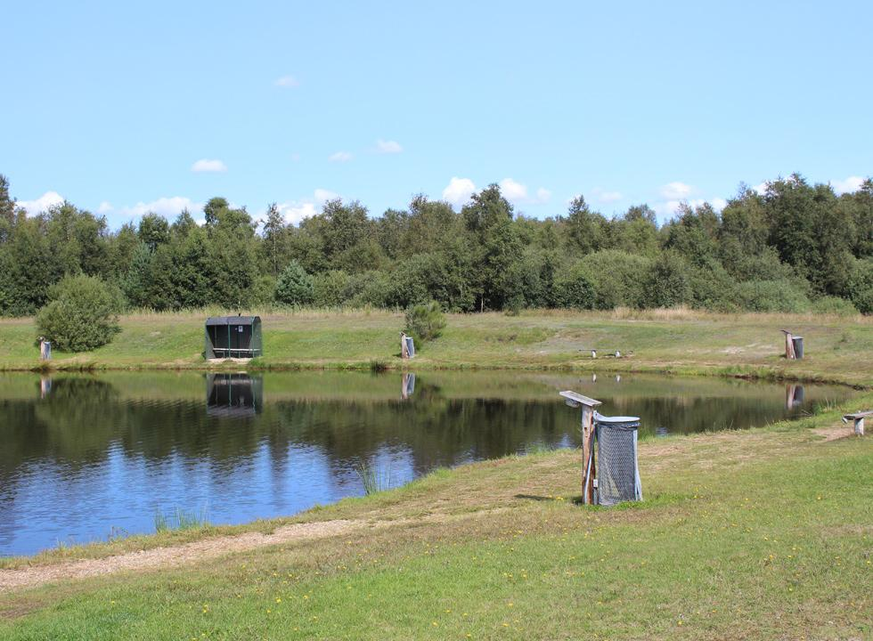 Close to the holiday homes in Skygge you will find the fishpond Skyggehale put-and-take