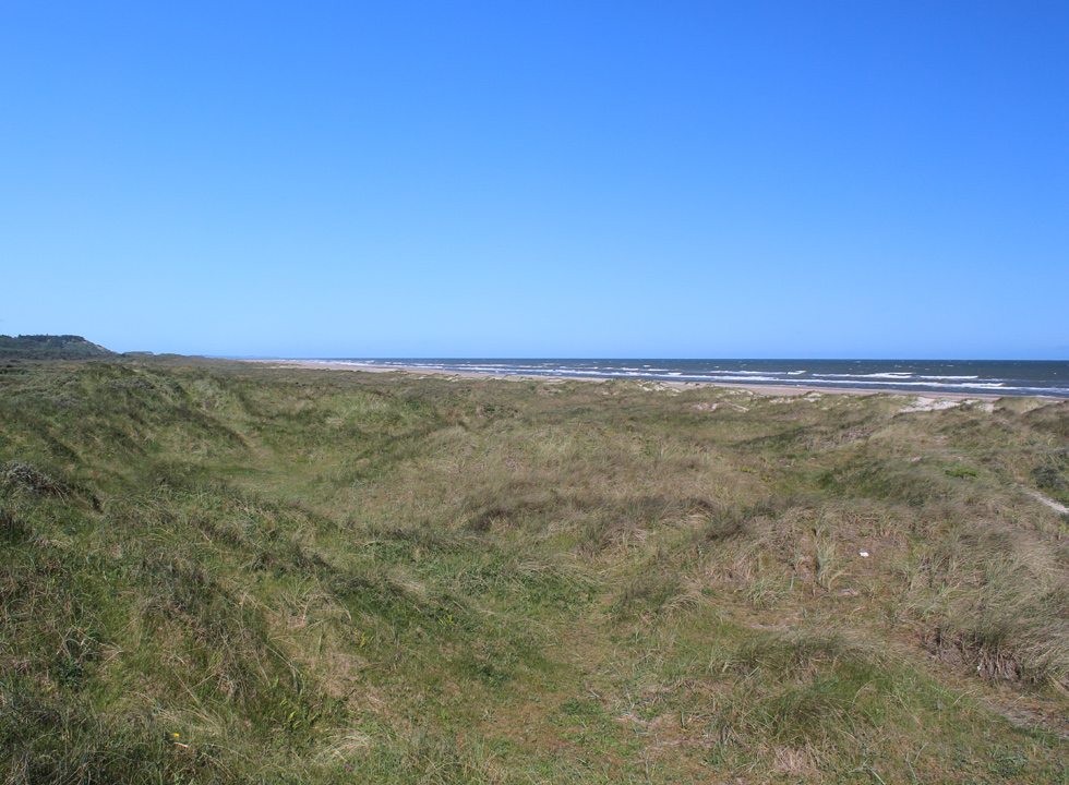 View of the preserved dune area towards south from Slettestrand