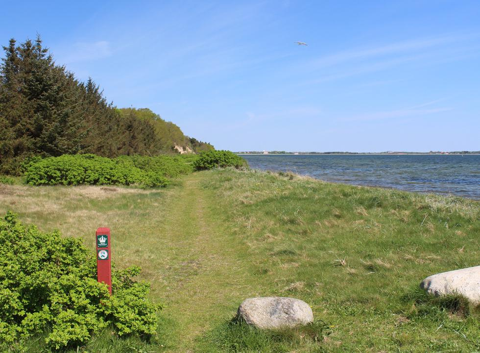 A hiking path leads you along the shore from the holiday home area Søndbjerg Strand