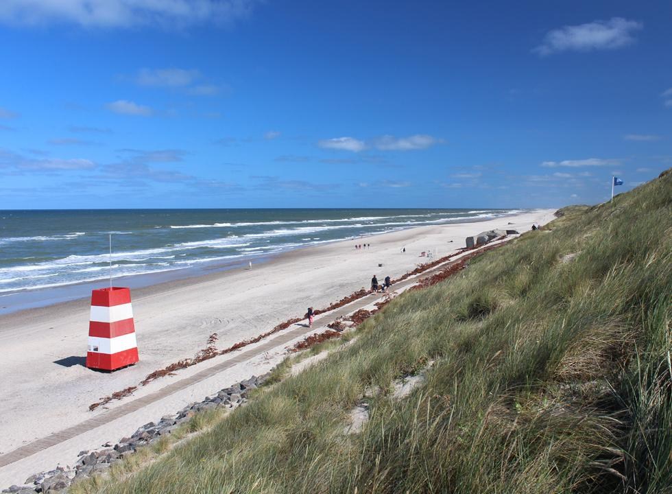 By the beach of Sondervig you can use a long path, which enables you to bring prams, bicycles and wheelchairs to the beach