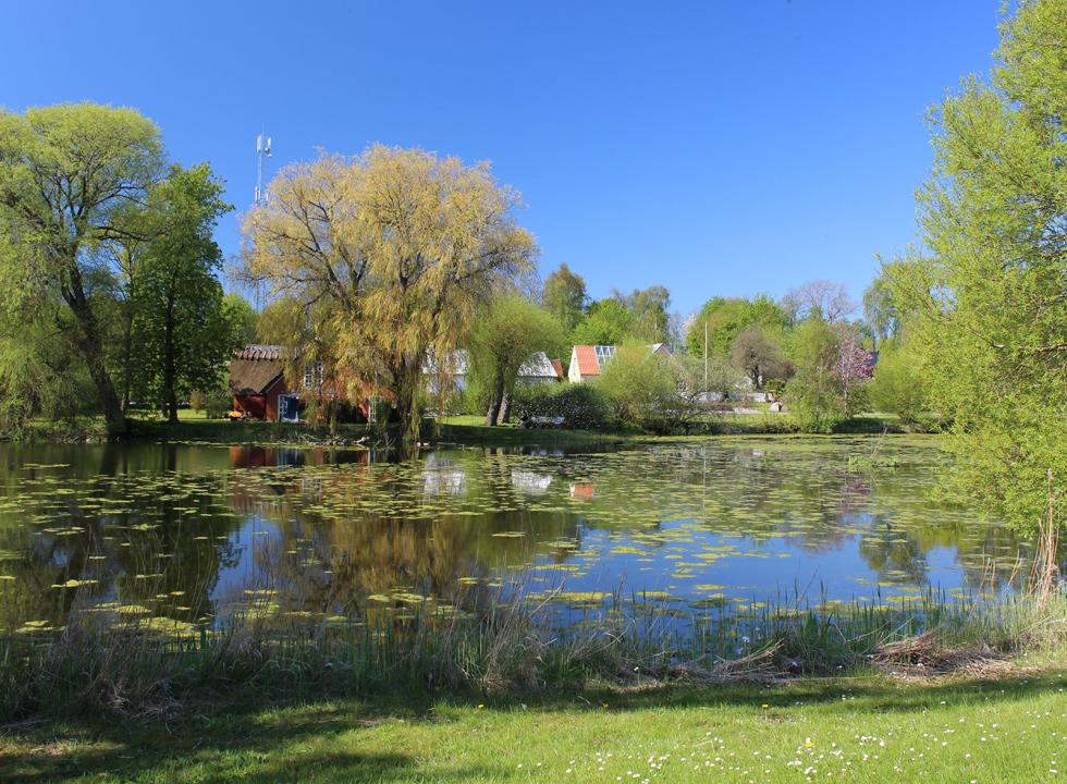 Picturesque village pond with water lilies in the village behind the holiday home area St. Sjørup