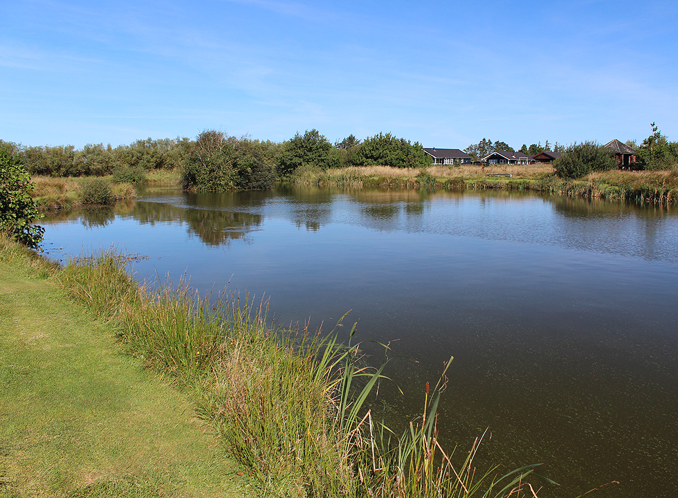 The fishpond in Stauning is surrounded by scenic nature and holiday homes