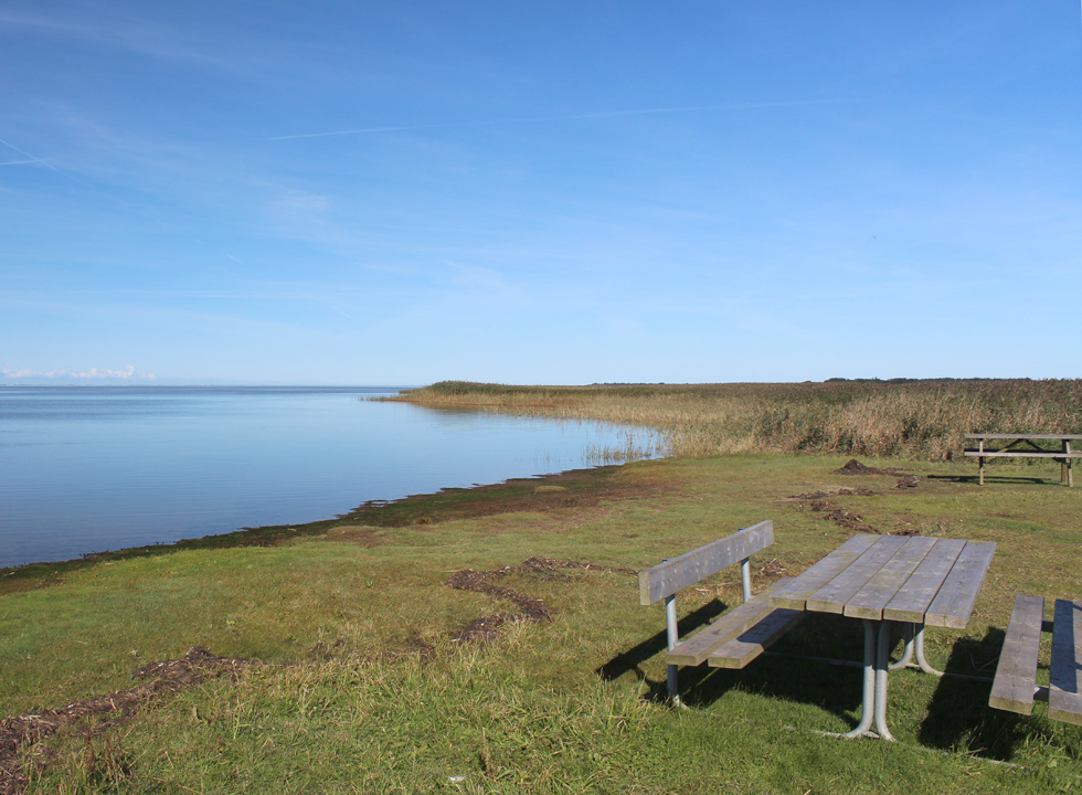 You can swim in Ringkobing Fjord by Stauning or have a picnic and enjoy the view of the inlet