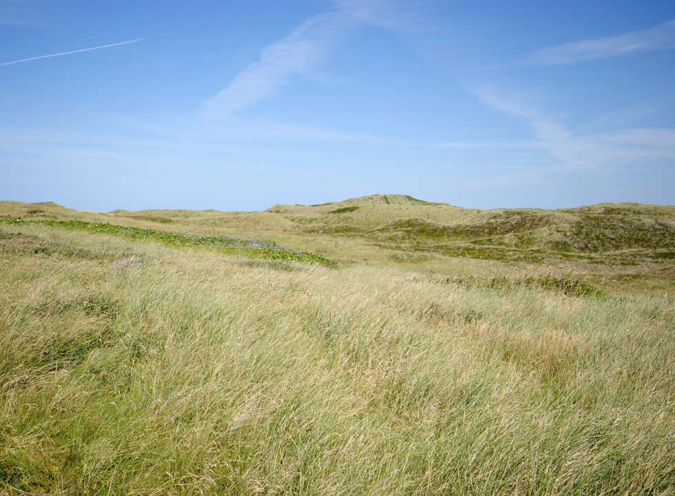 The beautiful moor, which surrounds Stenbjerg Landingsplads