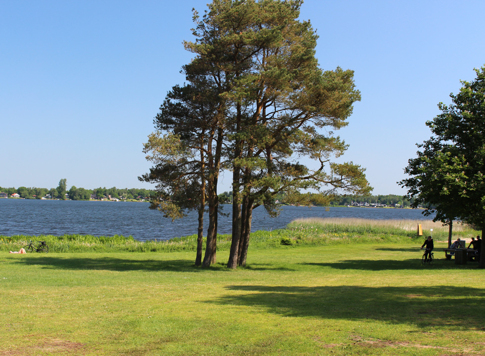 Relaxation in a green space by the lake Sunds Sø