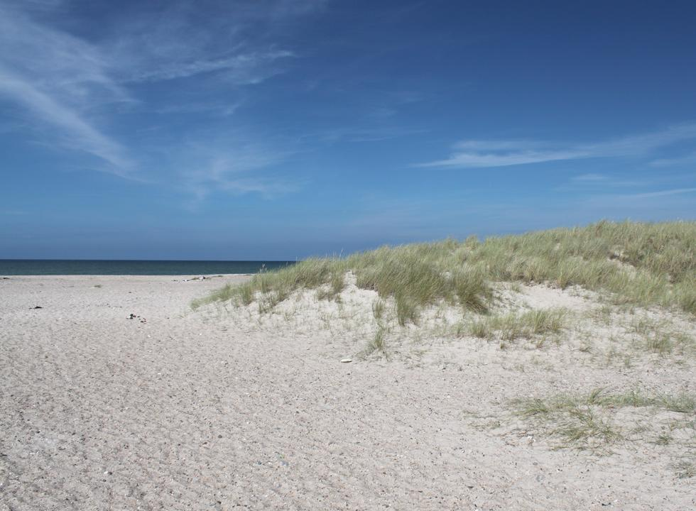 The wide sandy beach with small dunes in Svinkløv
