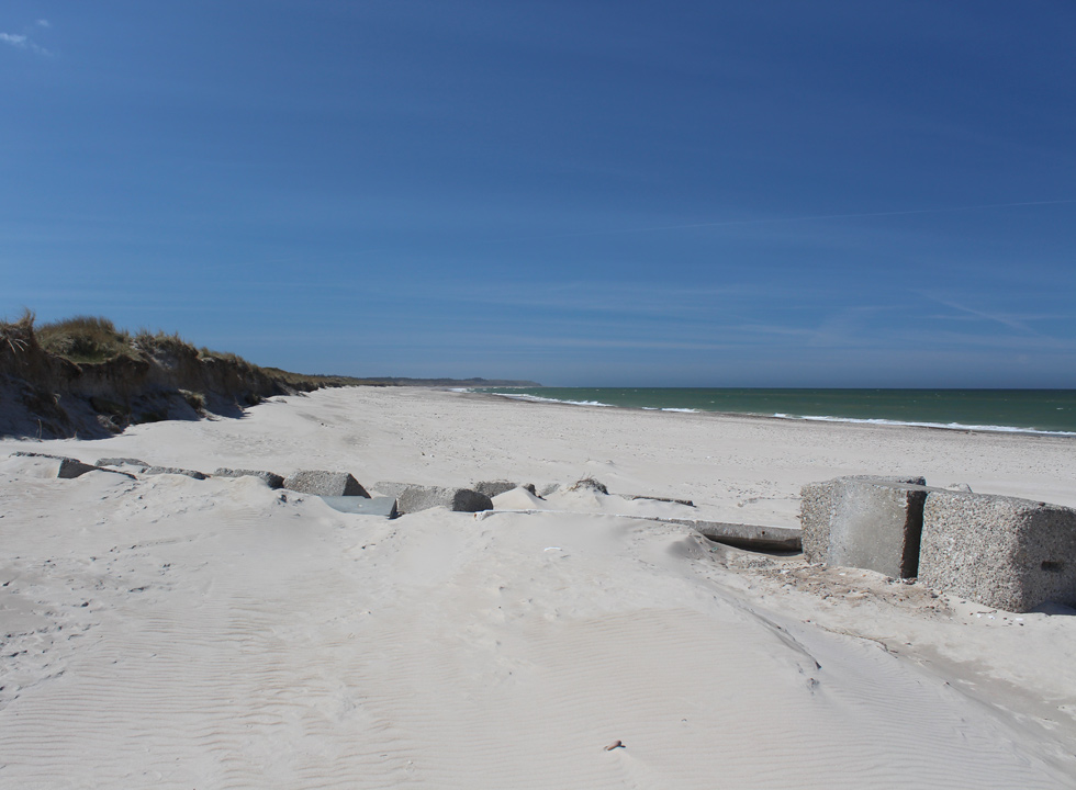 Long wide and sandy beach with dunes in Thorup Strand