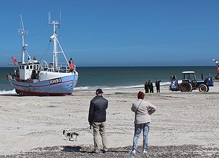 One of the fishing boats is being pulled up on the beach by a tractor in Thorup Strand