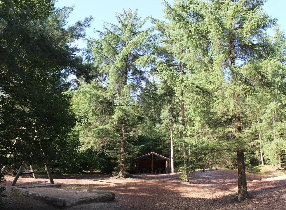 Cosy forest playground near the centre of Tranum and the holiday home areas
