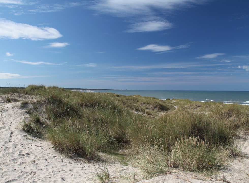 View of the sea from the high dunes in Tversted