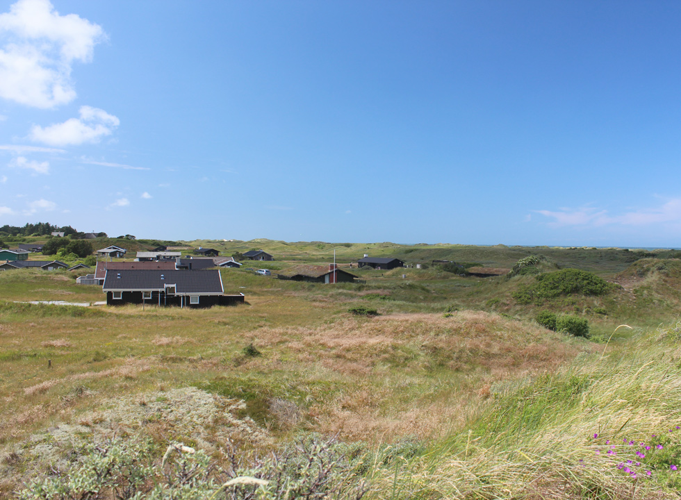 Dune area with holiday homes behind the beach in Tversted