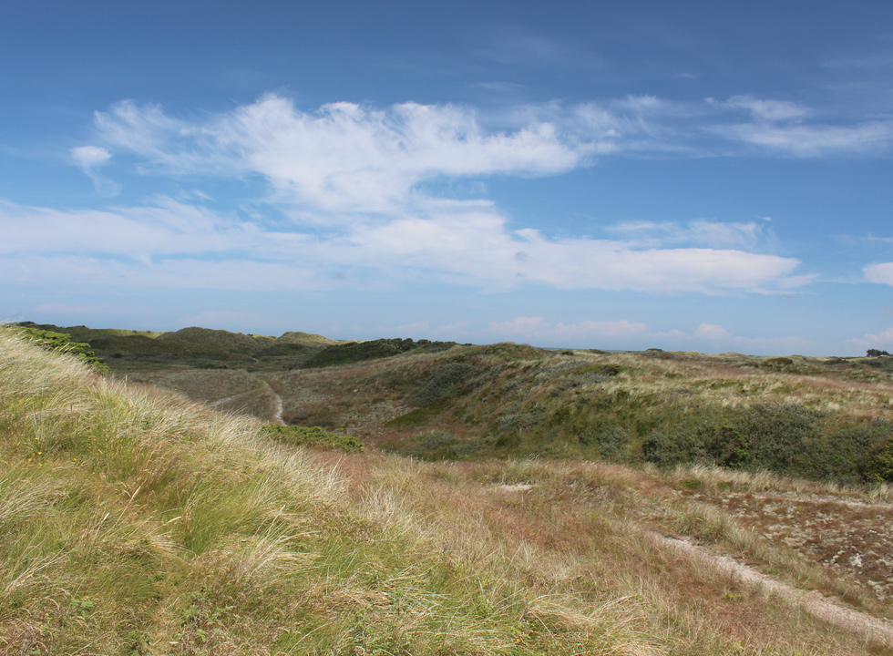 The hilly dune landscape, which surrounds the holiday homes in Tversted